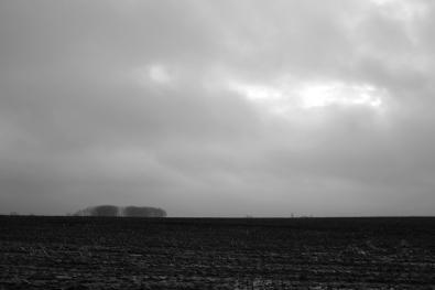 horizonder